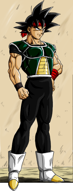 Bardock3 color2