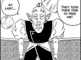 Old Kai (Universe 9)