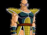 Nappa (Universo 13)