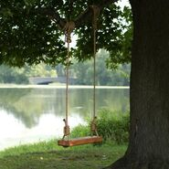 8b3299826c9b36100ca54bdab63c5d70--tree-swings-swing-tree