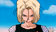 Android 18 (20)