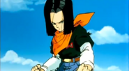 Android17NotTooHappy
