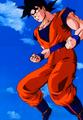 Goku N Yeh