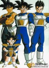 The sayain family