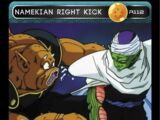 Namekian Right Kick