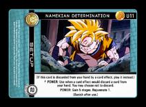11 namekian-determination
