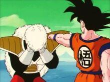 Running Jokes | Dragon Ball Z The Abridged Series Wiki