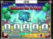 Aquamarine Dragon Recruitment Offer