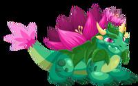 Nenufar Dragon 3