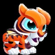 Tiger Dragon 1
