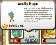 Wrestler Dragon