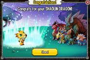 Congratulations Shaolin