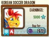 Korean Soccer Dragon