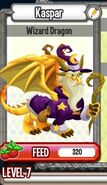 Wizard dragon adult