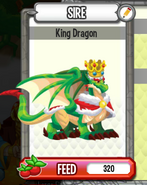 Dc-king dragon(adult)