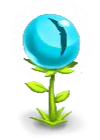 ไฟล์:CatEye Flower.png