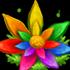 Flor Arcoíris