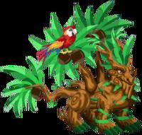 Tropical Dragon 3