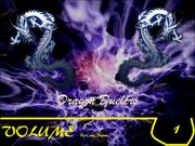 Dragon Duelers Volume 1