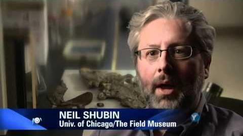 Evolution - What Darwin Never Knew - NOVA PBS Documentary
