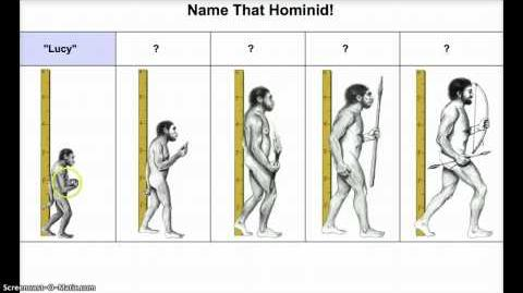Early Hominids Capabilities