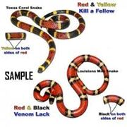 King snake coral snake