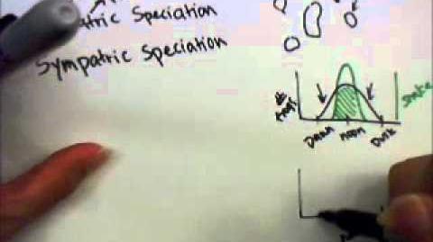 Allopatric and sympatric speciation