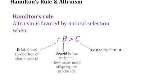 Hamilton's Rule-0