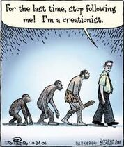 Creationist Takes a Walk
