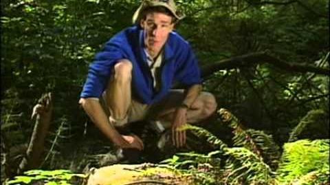 Bill Nye The Science Guy - Biodiversity (Full Episode)