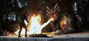 Dragonheart campfire
