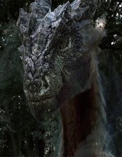 Drago Profile