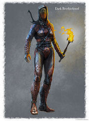445px-SR-concept-Dark Brotherhood Female Armor