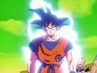 Goku's Power