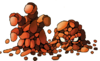 DQIX - Magmalice