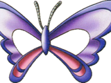 Papillon mask