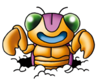 DQVDS - Boring bug