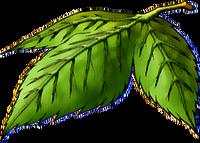 DQVIII - Yggdrasil leaf