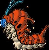 DQVDS - Lava larva