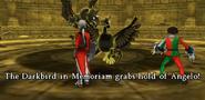 DarkbirdMem1