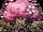 Cherreevil Blossom.png