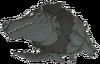 DQVIII - Darkodile