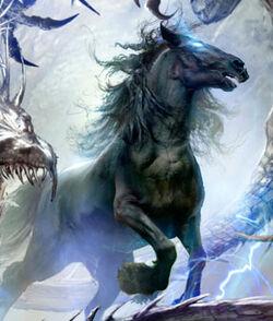 Darkhorse - Jon Sullivan