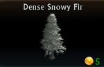 Dense Snowy Fir