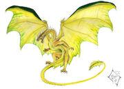 German Dragon by SabrielDragonkin