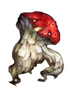 Myconoid2