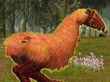 Rosebeak Ostriack