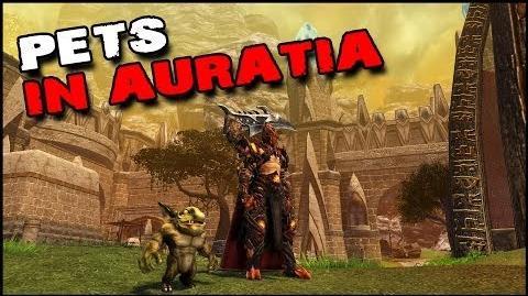Dragon's Prophet Pets in Auratia - Level 90