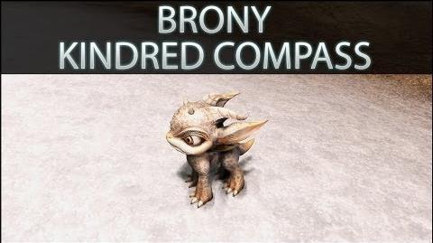 Dragon's Prophet Brony