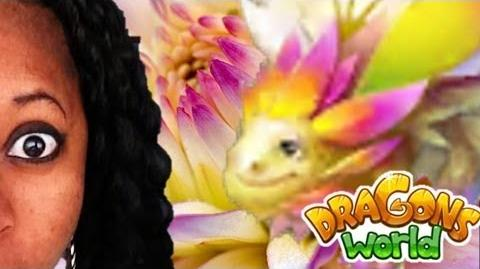 DRAGONS WORLD - Hatching the Flower Dragon